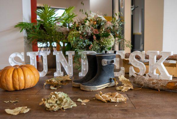 Sundesk blog - 5 conseils pour éviter le coup de blues de l'automne